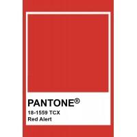 Головні кольори осінь-зима 2021/22 від Pantone